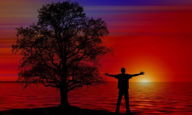 薌田七樹(二)脊椎和呼吸~練習覺知呼吸活化脊椎